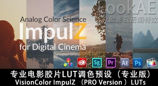专业电影胶片LUT调色预设(专业版)VisionColor ImpulZ LUTs PRO Version