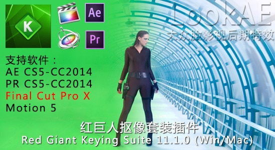 FCPX/AE/PR 红巨人抠像套装插件 Red Giant Keying Suite 11.1.6 (Win/Mac)