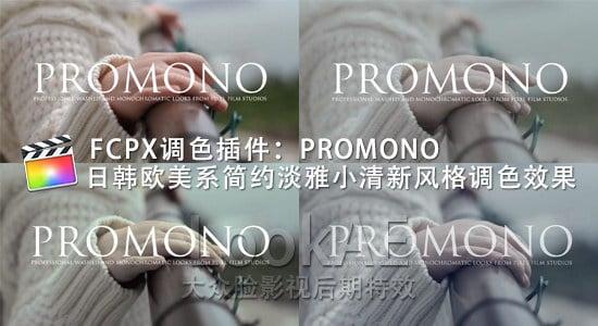 FCPX调色插件:日韩欧美系简约淡雅小清新风格调色插件 PFS - PROMONO