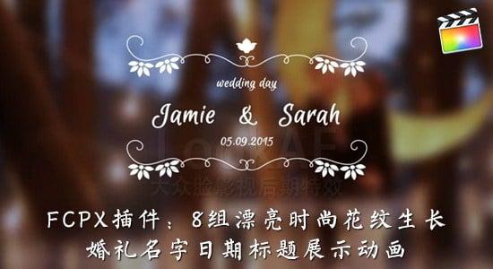 FCPX插件:8组漂亮时尚花纹生长婚礼名字日期标题展示动画 LookAE - 婚礼标题