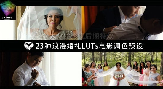 23种浪漫唯美婚礼 LUTs 电影调色预设 LAPARDIN WEDLUTS