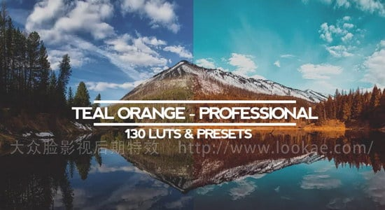 138种电影大片级专业电影LUTs调色预设 Teal And Orange – Standard Pack (RMN) Luts And Presets