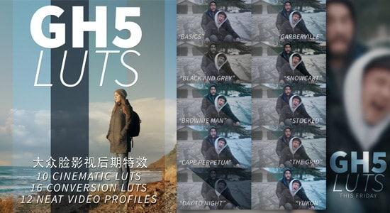 66种松下GH5摄像机专用LUTs调色预设 Panasonic Lumix GH5 LUTs