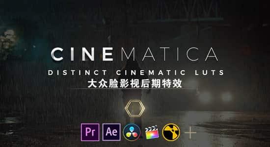 50种独特影视大片LUTS调色预设 Cinematica LUTs(AE/PR/FCPX/PS/达芬奇/OFX) FCPX 插件-第1张