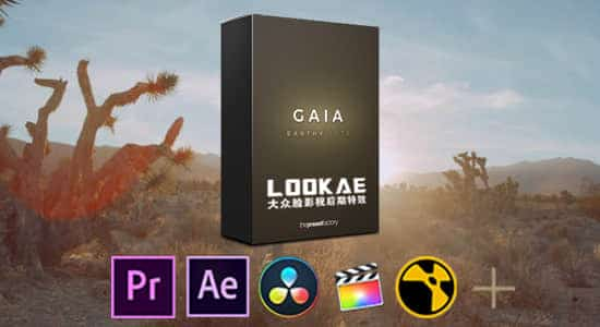 12套自然柔和LUTs调色预设 The Preset Factory - Gaia(FCPX/PR/PS/AE/达芬奇/OFX) FCPX 插件-第1张