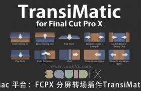 FCPX插件:分屏转场特效插件 TransiMatic