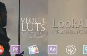 30组 LUTs 专业电影调色预设 GH4 VLog-L LUTs