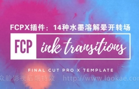 FCPX转场插件:14种中国风水墨溶解晕开切换转场 Ink Transitions