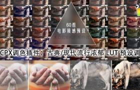 FCPX调色插件:60组古典/现代流行浓郁 LUT 预设调色 PFS – LUT Film