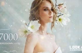 500个梦幻童话时尚婚礼情感食物发光森林爱情LUTS调色预设 7000+ Professional LUTs