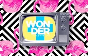 Apple Motion模板-时尚动感复古电视机图文介绍动画展示 Wonder Television
