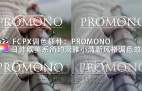 FCPX调色插件:日韩欧美系简约淡雅小清新风格调色插件 PFS – PROMONO