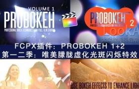 FCPX插件:第一二季 唯美朦胧虚化光斑闪烁特效 PFS – PROBOKEH 1+2