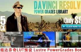 25组达芬奇LUT预设 Lustre Power Grades Bonus for DaVinci Resolve