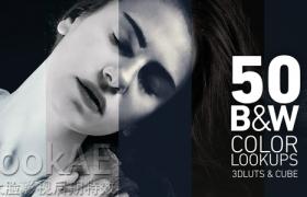 50组黑白风格LUTs电影风格调色预设  Black and White Color Lookups