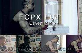 FCPX调色插件:60组电影大片风格 LUT 预设调色 LUT-Cinematic