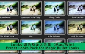 Looks 调色预设大合集(Mac/Win)Preset Looks Pack for Magic Bullet Looks