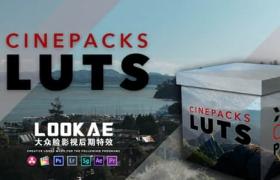 30个定制高质量电影婚礼纪录片视频LUTS调色预设 CinePacks LUTS