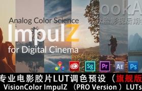 专业电影胶片LUT调色预设(旗舰版)VisionColor ImpulZ LUTs Ultimate Version