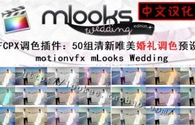 FCPX中文汉化插件:50组清新唯美婚礼调色 motionvfx mLooks Wedding