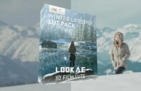 30种冬季户外环境生活场景LUTs调色预设 Winter Lifestyle LUT Pack