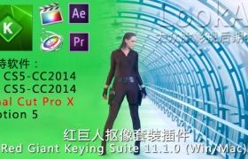 FCPX插件-红巨人抠像套装 Red Giant Keying Suite 11.1.11