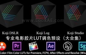 专业电影胶片LUT调色预设Koji Color: Film Color LUTs for Premiere, FCPX, After Effects and Resolve (Win/Mac)