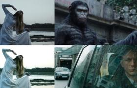 FCPX/AE/PR/SG/达芬奇电影胶片LUT调色预设ProLUT – Cinematic Colour Grading Presets