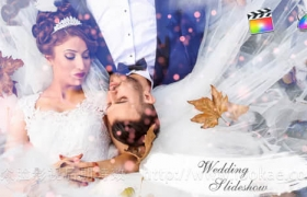 FCPX模板插件+Apple Motion模板:浪漫唯美婚礼粒子水墨遮罩照片相册片头