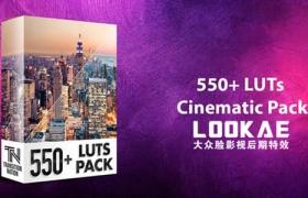550个室内户外照明环境城市黑白复古婚礼电影LUTS调色预设 550+ LUTs – Cinematic Pack