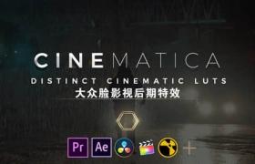 50种独特影视大片LUTS调色预设 Cinematica LUTs(AE/PR/FCPX/PS/达芬奇/OFX)