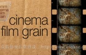 FCPX插件:35mm电影胶片颗粒 FCPeffects – Cinema Film Grain