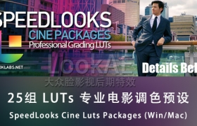 25组 LUTs 专业电影调色预设 SpeedLooks Cine Luts Packages (Win/Mac)